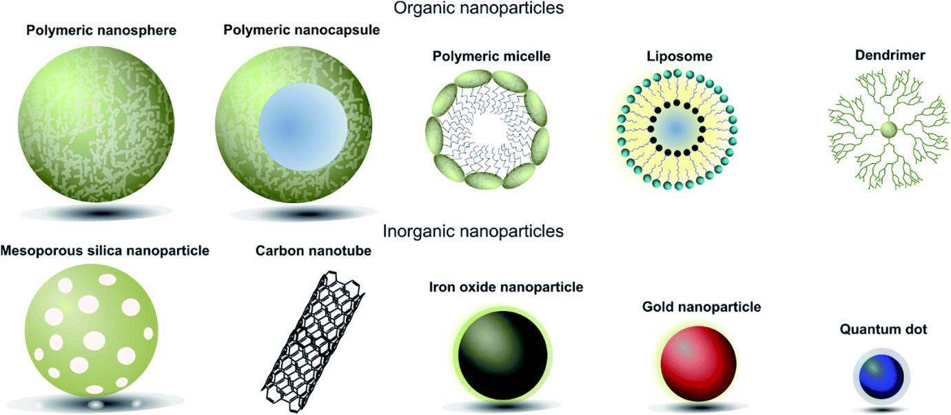 organic nanoparticles